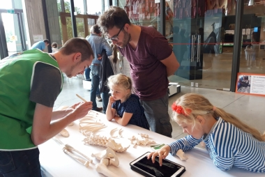 Archeologiedagen in Ename